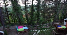ağva orman evleri güzel otel