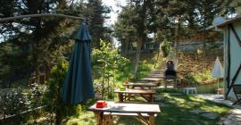 ağva orman evleri bahçeli odalar