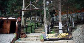 ağva orman evleri bungalow